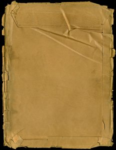 grungy_paper_texture_v_12_by_bashcorpo